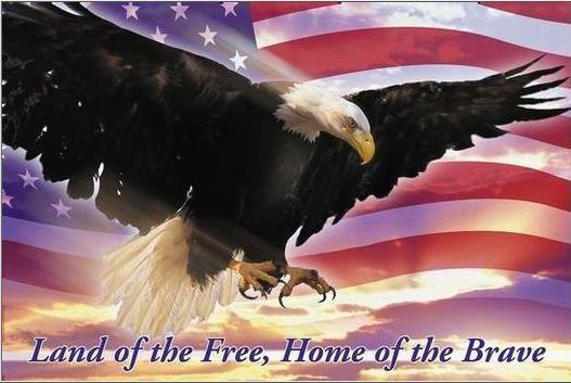 flag_eagle.jpg
