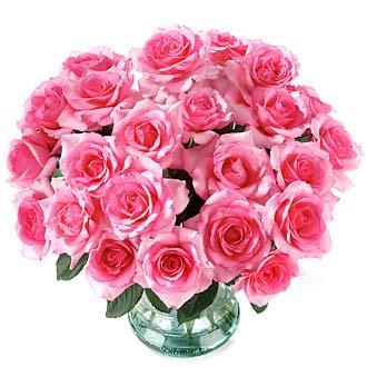 tabletop-pink.jpg